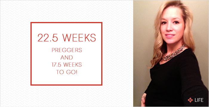 22 Weeks Preggers - Annie Johnson | Design Love Life