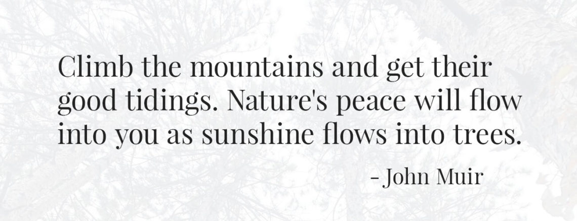 Quote: Climb the mountains and get their good tidings. Nature's peace will flow into you as sunshine flows into trees. - John Muir
