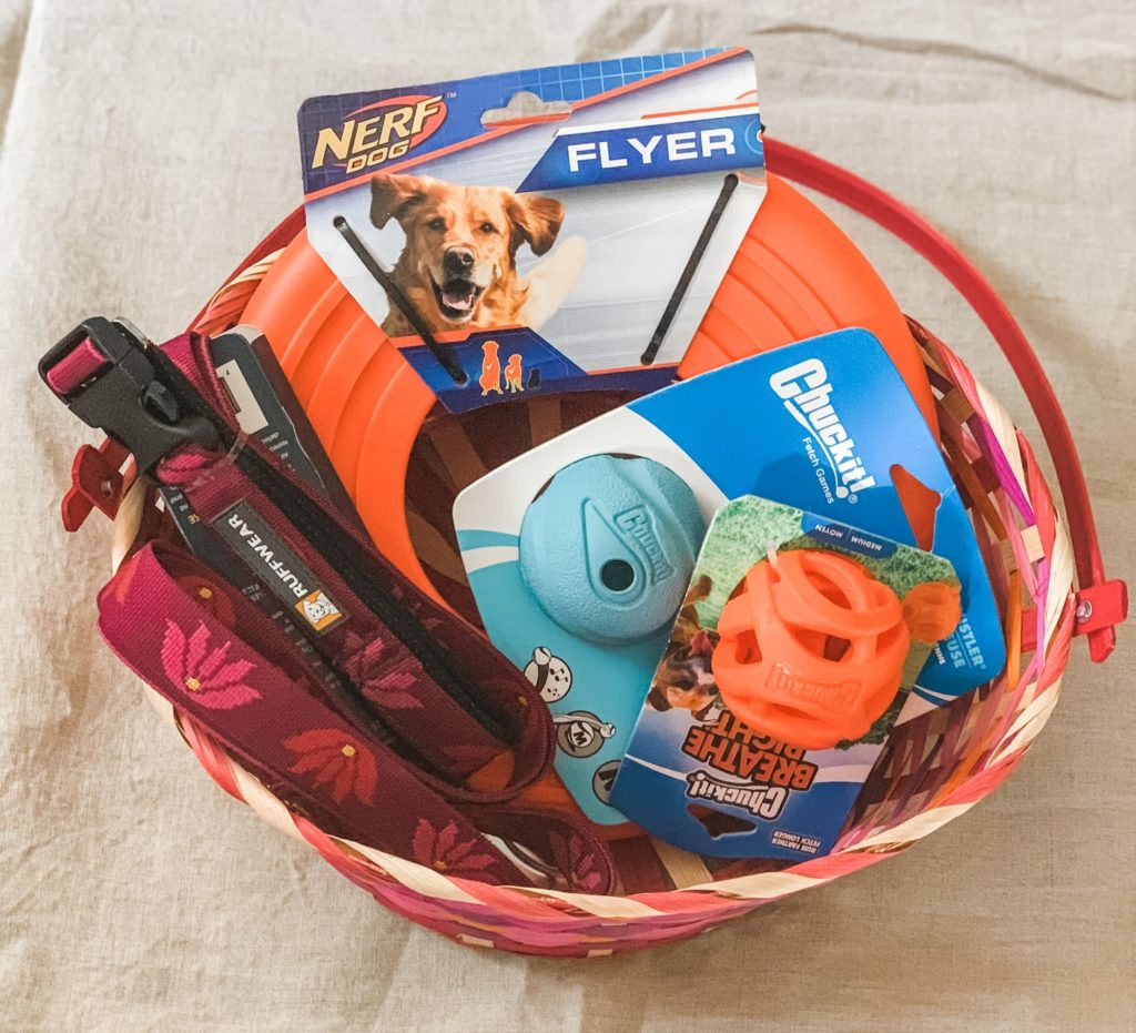 Small gift ideas for pets, for any holiday